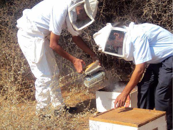 tunisie_aout2012_2.jpg